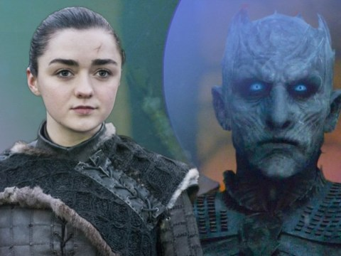 Game of Thrones fans finally learn how Arya Stark killed the Night King