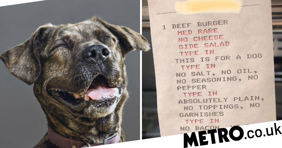 Customer gave restaurant a very detailed order to create perfect burger for dog