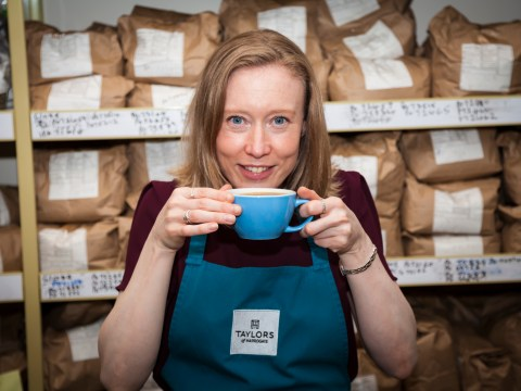 My Odd Job: I taste 250 cups of coffee a day