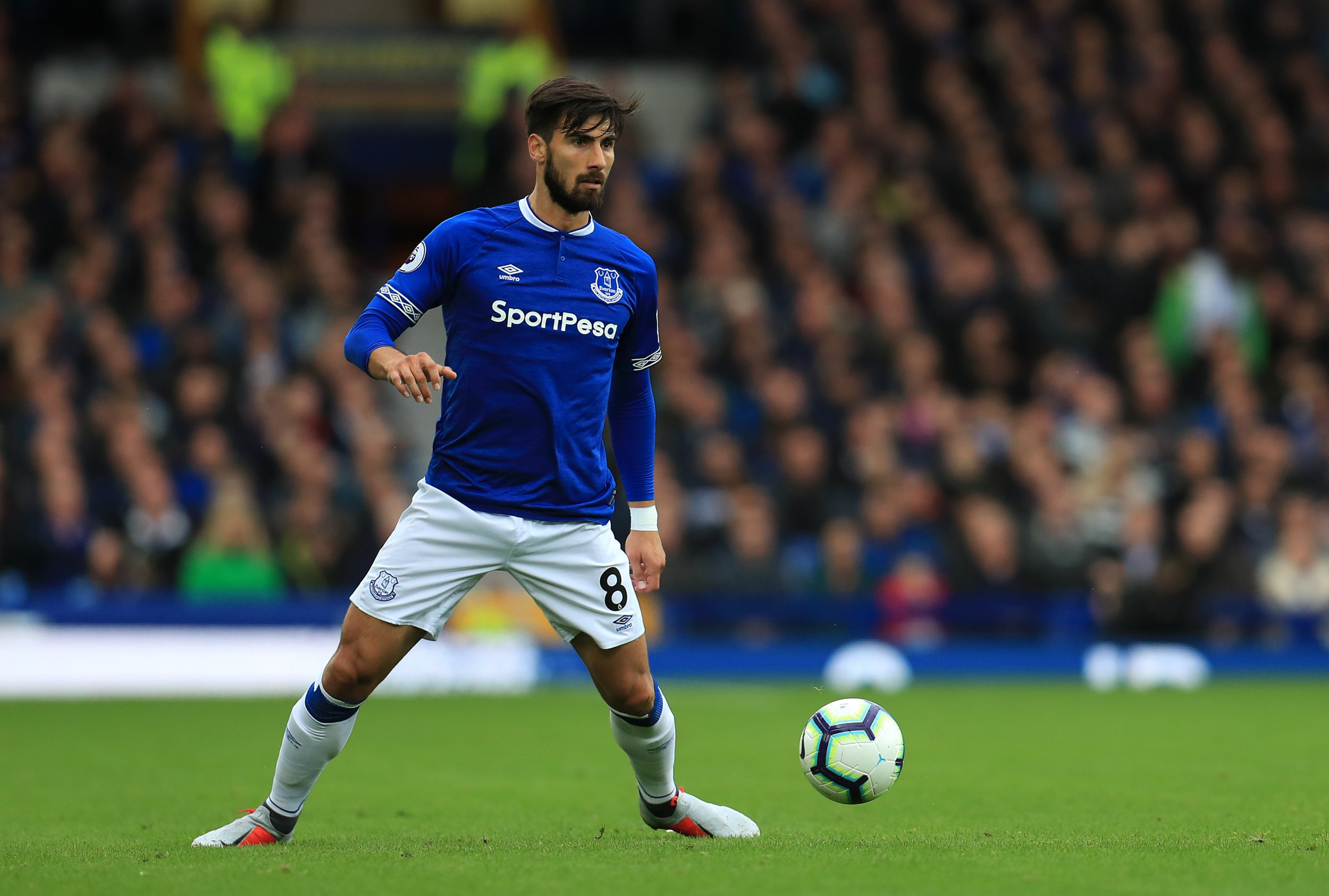 Andre Gomes has enjoyed a successful season on loan at Everton from Barcelona