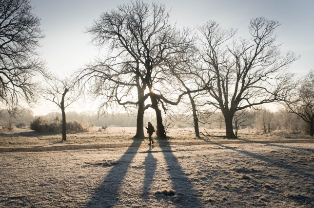 File photo dated 31/01/19 of heavy frost in Wanstead Park in north-east London, as the early May bank holiday will see snow and frost, with temperatures plunging close to the coldest on record - just a year on from the hottest ever recorded. PRESS ASSOCIATION Photo. Issue date: Thursday May 2, 2019. The mercury is expected to drop to as low as minus 5C (23F) in some parts, with overnight frosts, while snow is expected in some areas of high ground. See PA story WEATHER BankHoliday. Photo credit should read: Stefan Rousseau/PA Wire