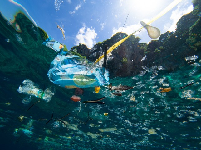 Plastic debris floating on the ocean surface, shot underwater.