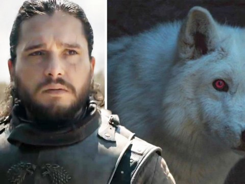 Game Of Thrones season 8 fans furious at Jon Snow after he doesn't hug Ghost