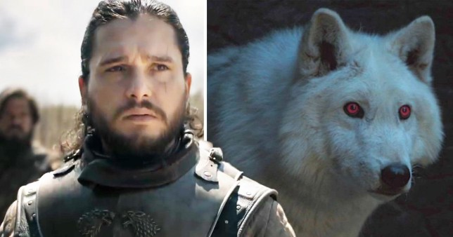 Game of Thrones writers scrapped battle with 50 direwolves which could have been the best moment of season 8