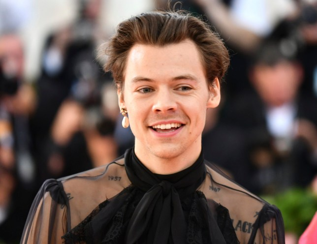 "Harry Styles attends The Metropolitan Museum of Art's Costume Institute benefit gala celebrating the opening of the ""Camp: Notes on Fashion"" exhibition on Monday, May 6, 2019, in New York. (Photo by Charles Sykes/Invision/AP)"