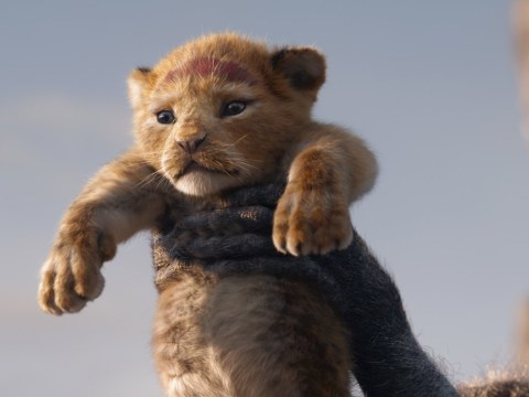 When is The Lion King UK release date and how to pre-order tickets