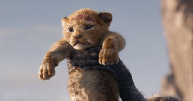 When Is The Lion King Uk Release Date And How To Pre Order