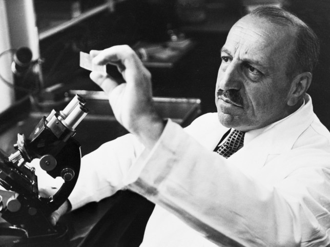 Dr George Papanicolaou, inventor of the smear test, examines a slide in a laboratory