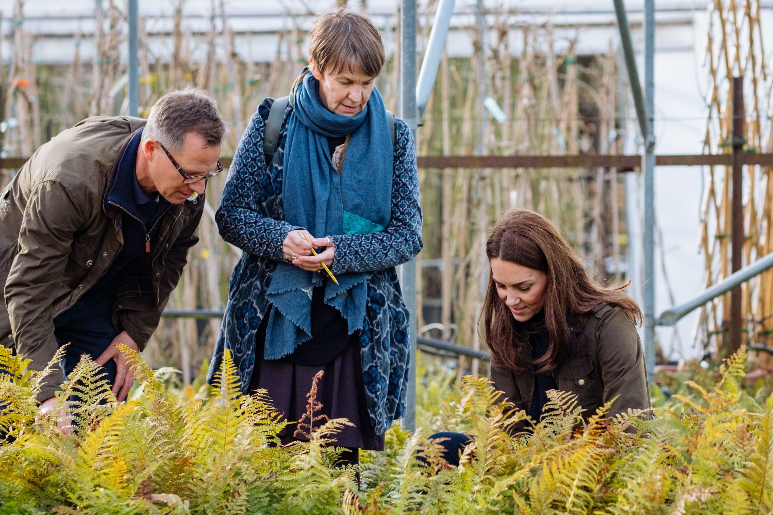 Duchess of Cambridge, garden