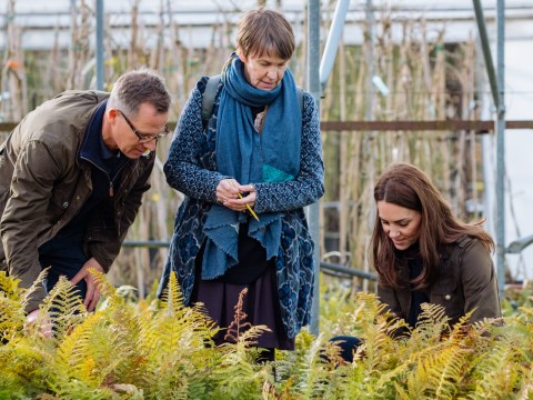 Kate Middleton teases upcoming Chelsea Flower Show garden in new pictures
