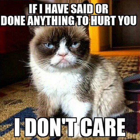The 30 Most Iconic Grumpy Cat Memes Metro News