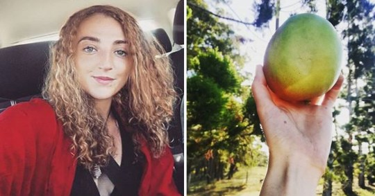 "Brit backpacker, 25, compares four-hour fruit-picking job in Australia to slavery Stephanie Banasko, from St Helens, Merseyside, moaned about the ""hard graft"" and ""ruthlessly repetitive [work]"" on a farm in rural Australia https://www.instagram.com/stephbanasko/"