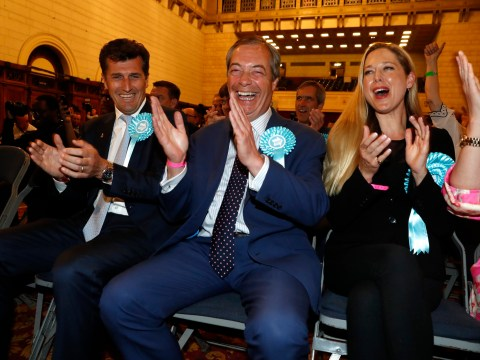 What does the new Brexit party stand for?