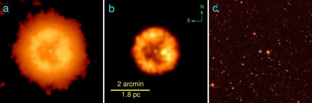 Three images of the zombie star, with the right-hand photo showing a wider view (Picture: Vasilii Gvaramadse/ Moscow University)