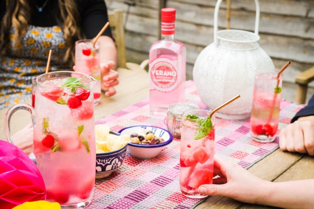 People drinking the Verano pink gin