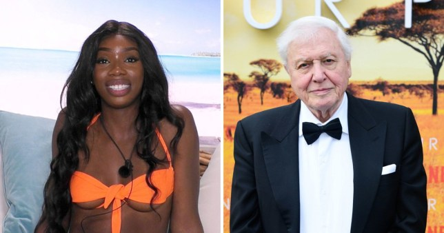 Love Island's Yewande admits she hates watching David Attenborough documentaries