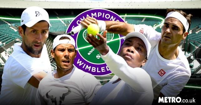 Novak Djokovic, Rafael Nadal, Serena Williams, Roger Federer