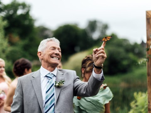 Poignant moment butterfly lands on dad's hand as he honours daughter who died