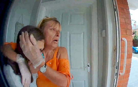 """Footage of Sharon Boalch & Shakira Jefferies when they realise that their cat Cleo was mauled to death on the driveway of their home in Worcester - The dog owner apologised on his hands and knees. A family has been left heartbroken after they watched in horror as two dogs savagely mauled their cat to death in a harrowing attack captured on camera. See SWNS story SWMDmaul. Sharon Boalch, 50, and her daughter Shakira Jefferies, 16, were left devastated after the pair of snarling Staffordshire Bull Terriers """"ripped apart"""" their beloved pet Cleo. Shocking footage captured by a doorbell camera shows the moment the defenceless feline was set upon by the out-of-control mutts on the driveway of their home. The dogs' owner can be seen trying to stop the hounds as they struck on Ash Avenue, in Brickfields, Worcester last Thursday (20/6). The video then shows the man apologising to the distraught mother-and-daughter who break down in tears upon hearing the news. The owner can be heard telling the pair: """"I was in the park and my dogs were following a black cat and they killed him. I was going to take him to the vet."""" At one point he even gets down on his knees and says """"I'm so sorry"""" as Shakira weeps outside her house and Sharon cries out """"Dogs should be on a lead"""". Shakira said she saw the dogs attacking the cat and dragging her into a nearby park but didn?t realise it was Cleo until it was too late."""