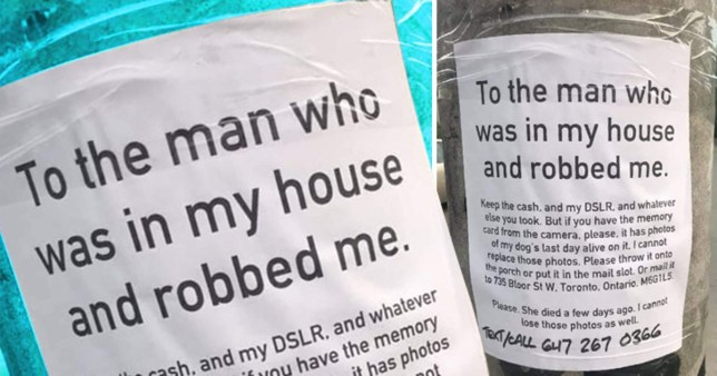 Heartbreaking note asks for thief to return photos of dog's last day
