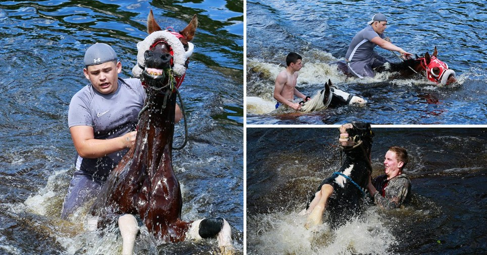 Compilation of travellers riding their horses through the River Eden in Cumbria for the Appleby Horse Fair 2019