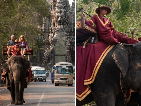 Elephant rides to stop at Cambodia's biggest attraction