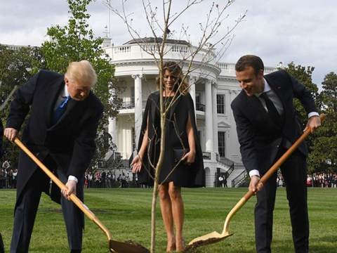 Trump and Macron's friendship tree dies after being put into quarantine