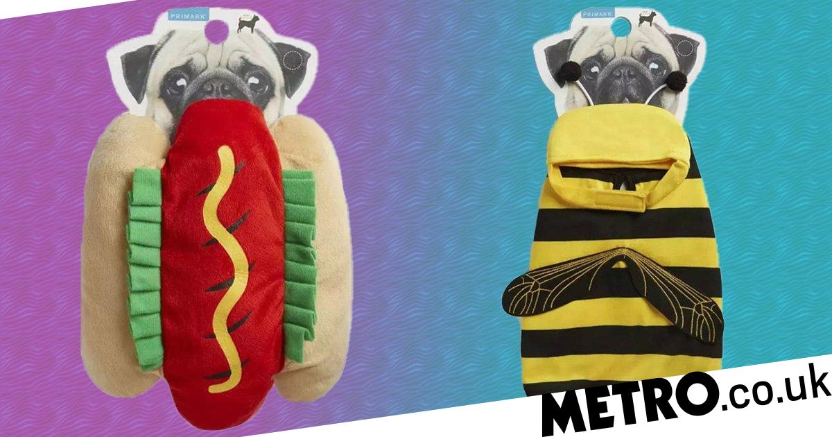 Primark launches range of pet outfits including unicorn, hotdog and bee outfits