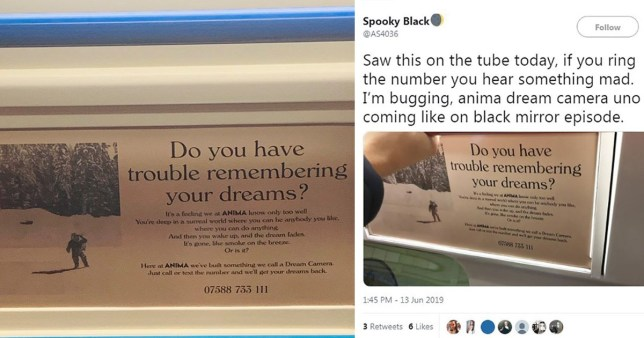Mysterious adverts for Anima Technologies have begun appearing on the London Underground