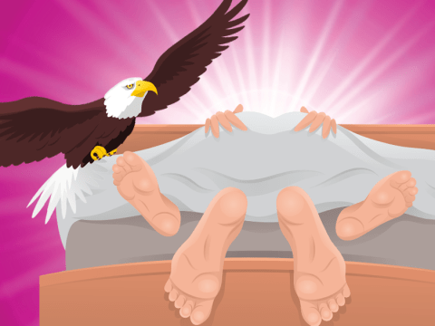 What is the eagle sex position?