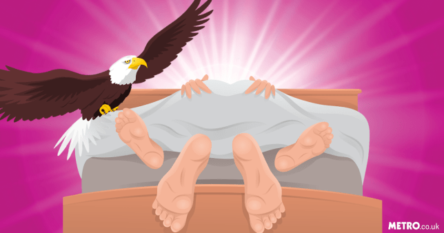 Illustration of two people lying in bed together having sex (with the covers on top so you can only see their feet and hands) with an eagle flying up ahead on a pink background