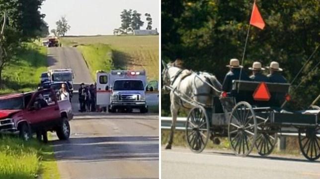 Michigan, Amish, buggy, crash, Algansee Township, drunk, Tyler Frie