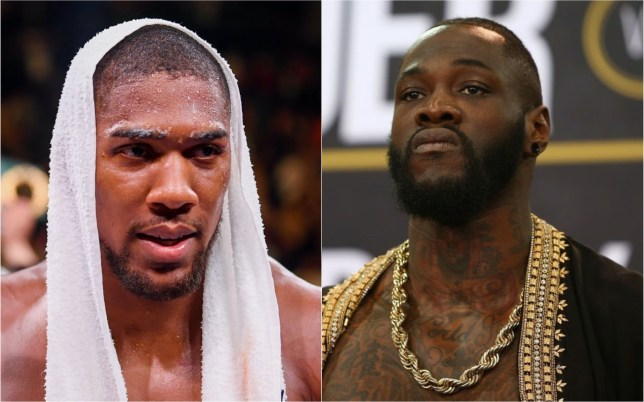 Deontay Wilder has urged Anthony Joshua to 'regroup' after his defeat to Andy Ruiz Jr