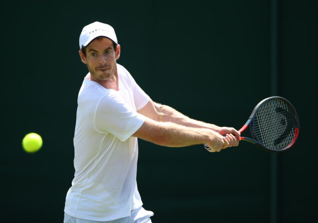 Andy Murray hitting a tennis ball with his racket on a Wimbledon court