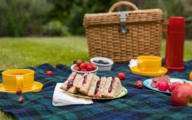 A picnic spread in a park including jam sandwiches, fruit, a basket and a yellow cup
