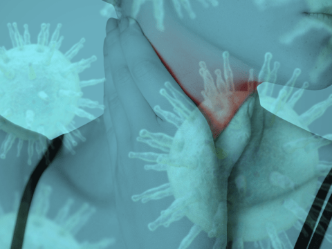 The kissing disease: What are the signs and symptoms you have glandular fever?