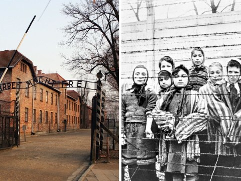 Children of Holocaust survivors 'inherited concentration camp brain damage'