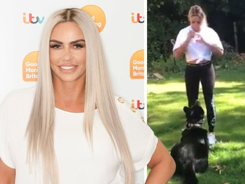 Katie Price gets a guard dog after South Africa carjacking leaves Princess 'suffering' a year later