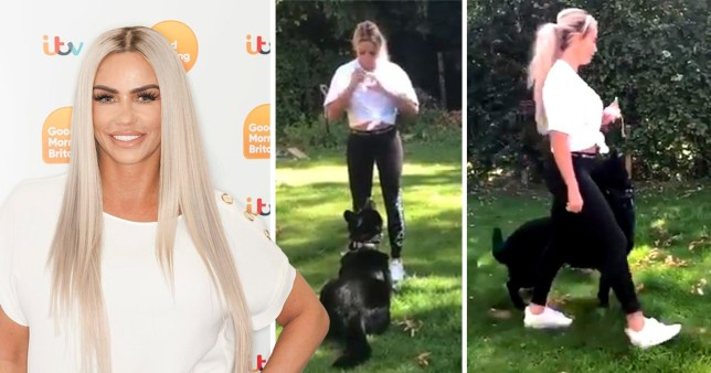 Katie Price with new protection dog
