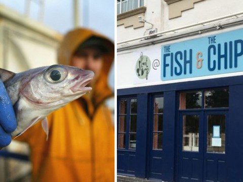 Chippy closes in protest at overfishing and plastic pollution