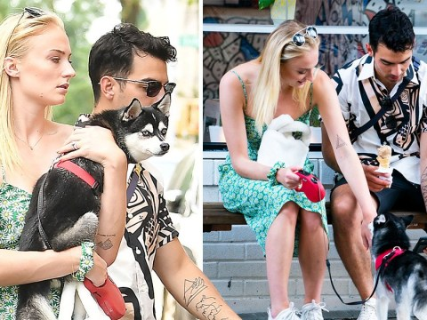Sophie Turner and Joe Jonas put on brave face as they take dog Porky to park following Waldo's tragic death