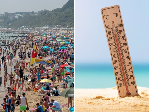 Record-breaking heatwaves 'have already killed hundreds of people' this year