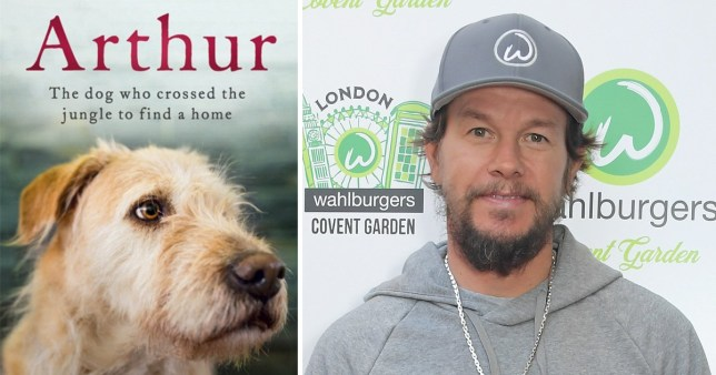 Mark Wahlberg signs up for Arthur The King