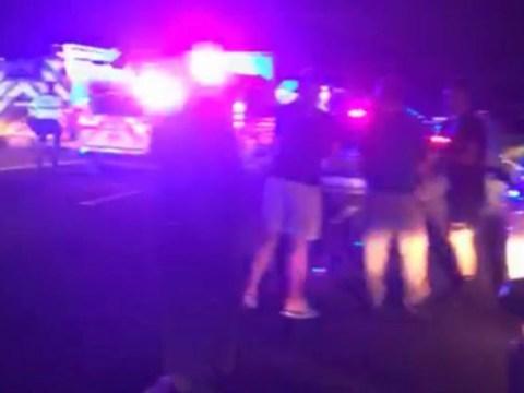 Hit-and-run crash kills girl, 12, and injures five family members