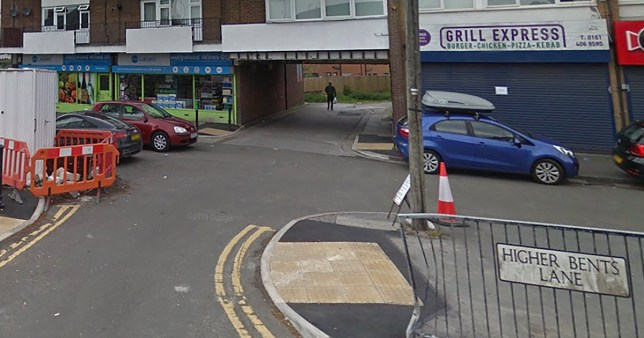 Manhunt after woman was sexually assaulted in alleyway in Bredbury