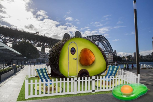 Spend the night in an avocado caravan for only £56 a night