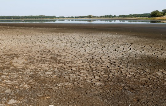 A view shows dried up mud from the Landes pond in Lussat, central France