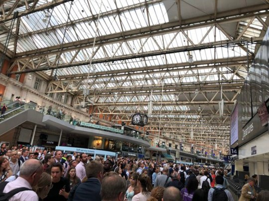 Waterloo trains suspended due to man chasing dog