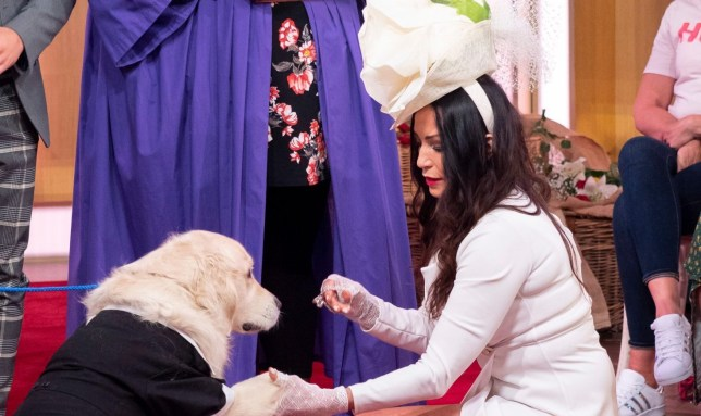 Elizabeth Hoad marries her dog on This Morning