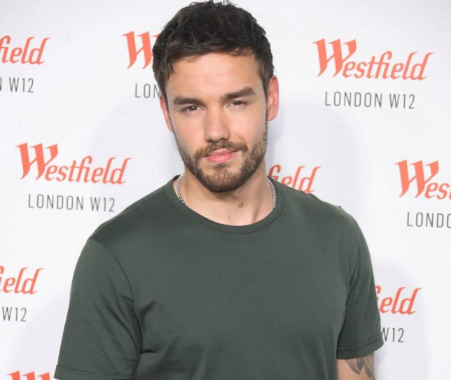 Liam Payn's SummerChime concert cancelled
